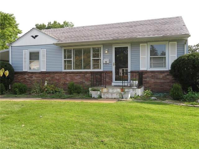 9620 Theodosia Avenue, St Louis, MO 63114 (#21066428) :: Hartmann Realtors Inc.