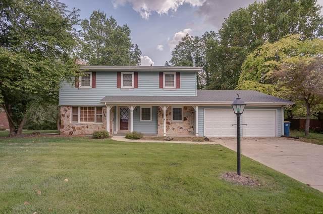 4 Trailridge Lane, Glen Carbon, IL 62034 (#21066556) :: Reconnect Real Estate