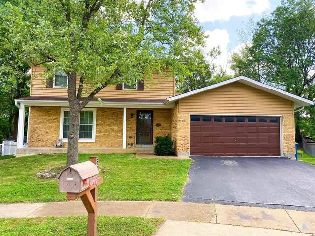 6800 Casselberry Court, St Louis, MO 63123 (#21066767) :: Jenna Davis Homes LLC