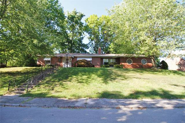 1003 S 2nd Street, Festus, MO 63028 (#21067025) :: Jeremy Schneider Real Estate