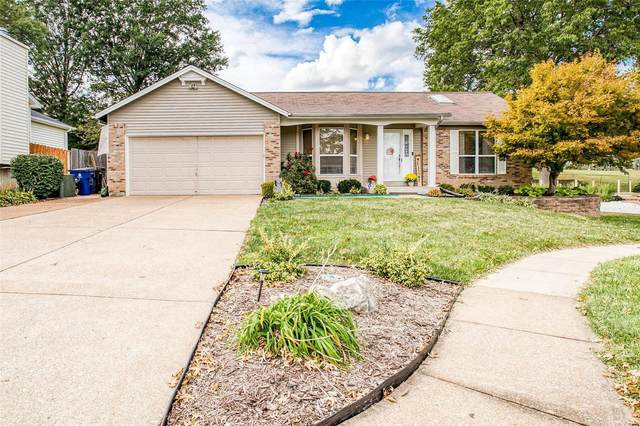 4127 Saddle Back Court, St Louis, MO 63129 (#21067077) :: Parson Realty Group