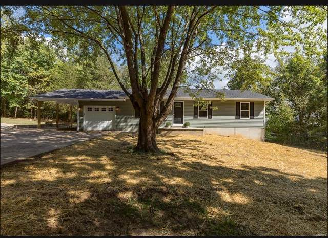 4356 Lakeview Dr., Hillsboro, MO 63050 (#21067449) :: Clarity Street Realty