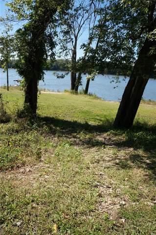 15669 N Mississippi River Road, HAMBURG, IL 62045 (#21067644) :: Krista Hartmann Home Team
