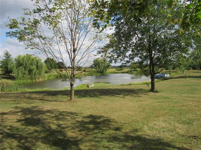 0 Tower Hill Acres, Dow, IL 62022 (#21067784) :: The Becky O'Neill Power Home Selling Team