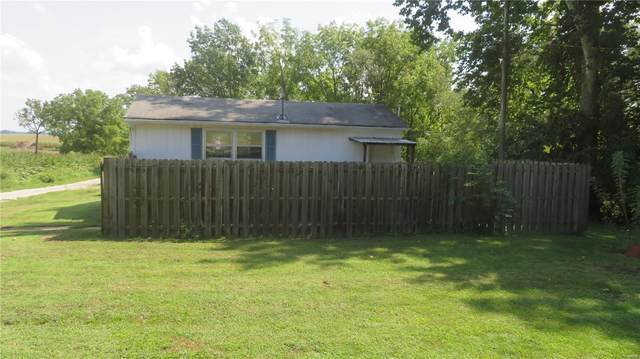74 Bissell Street, PANA, IL 62571 (#21067897) :: Clarity Street Realty