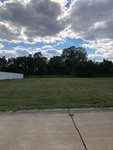 117 Shawnee Drive, Wood River, IL 62095 (#21068170) :: Krista Hartmann Home Team