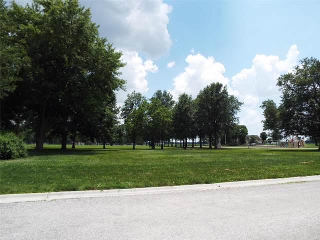 0 Oak Street, DAMIANSVILLE, IL 62215 (#21068667) :: Fusion Realty, LLC