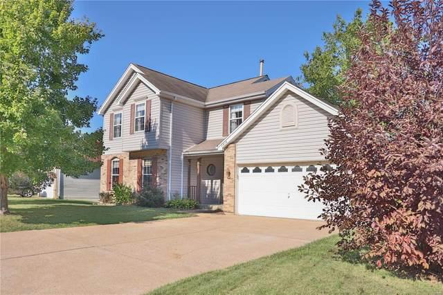 4616 Greenore Drive, High Ridge, MO 63049 (#21068815) :: Clarity Street Realty