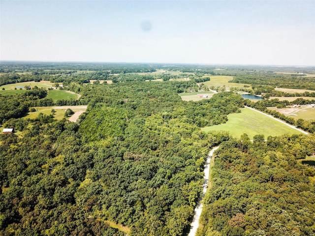 10258 County Road 1006, Auxvasse, MO 65231 (#21068932) :: Matt Smith Real Estate Group