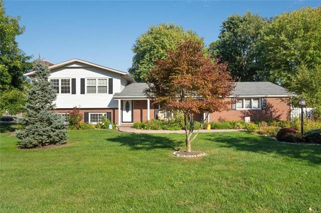316 Louise Drive, Collinsville, IL 62234 (#21069026) :: RE/MAX Professional Realty
