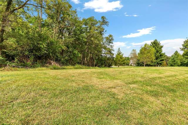 3709 Thorne Briar Court, Millstadt, IL 62260 (#21070832) :: Mid Rivers Homes