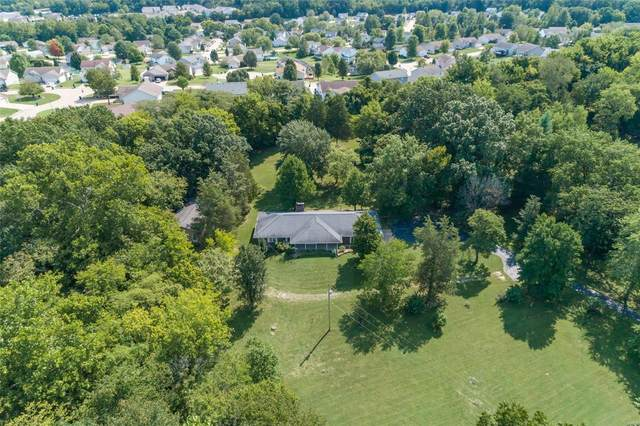 120 Courtside Drive, Festus, MO 63028 (#21071401) :: Parson Realty Group