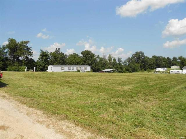 0 Lot 4 Pebble Creek Dr., Harviell, MO 63945 (#21071579) :: The Becky O'Neill Power Home Selling Team