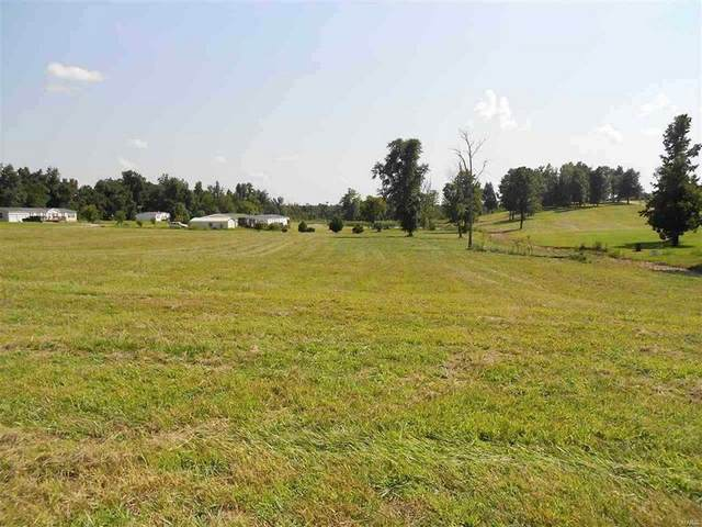 0 Lot 3 Pebble Creek Dr., Harviell, MO 63945 (#21071580) :: The Becky O'Neill Power Home Selling Team