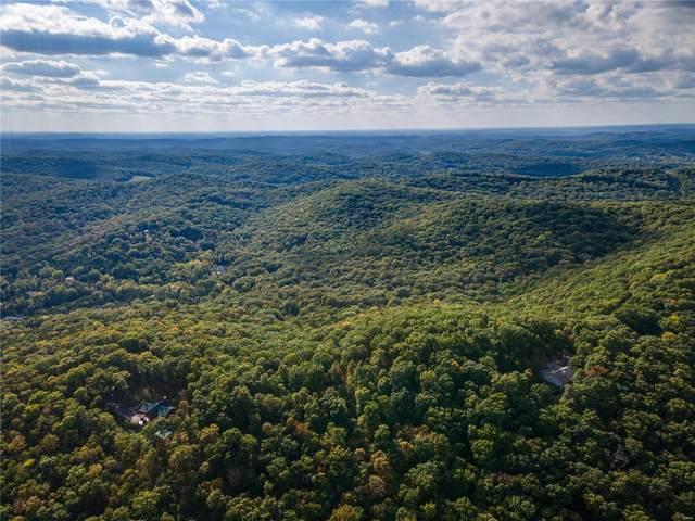 4100 Osage Ridge, House Springs, MO 63051 (#21071775) :: Elevate Realty LLC