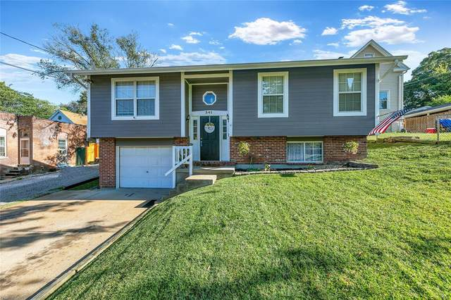 341 Horn Avenue, St Louis, MO 63125 (#21072210) :: Parson Realty Group