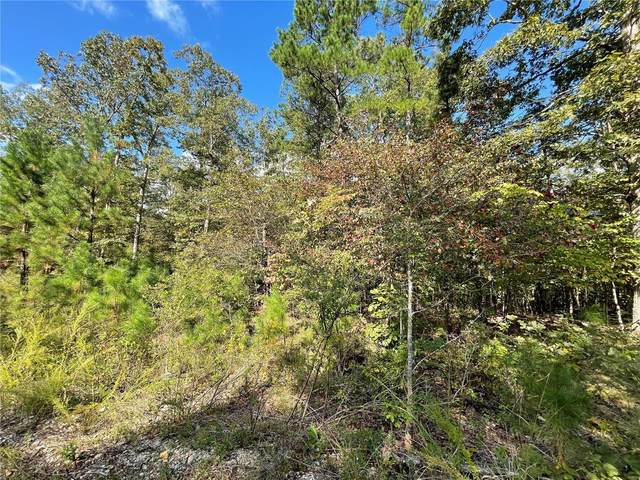 6 Woodland Heights W, Poplar Bluff, MO 63901 (#21072238) :: Mid Rivers Homes