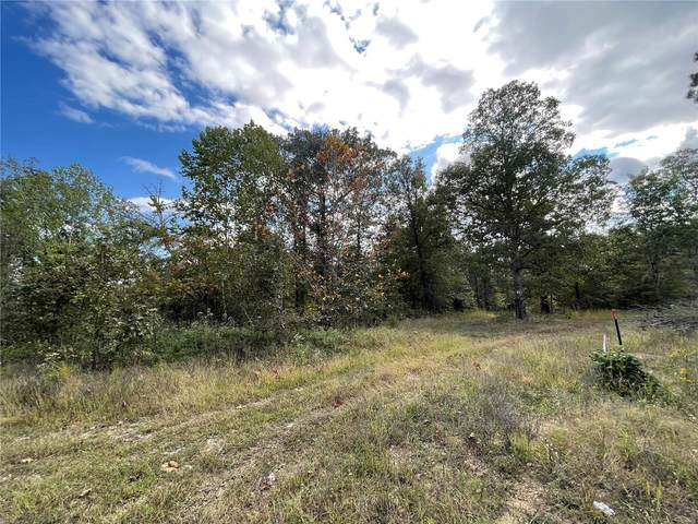 15 Woodland Heights W, Poplar Bluff, MO 63901 (#21072250) :: Mid Rivers Homes
