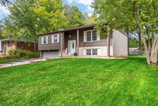 1025 Carole Lane, Ellisville, MO 63021 (#21072655) :: The Becky O'Neill Power Home Selling Team