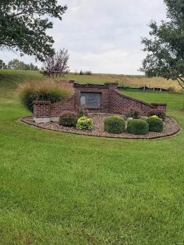 619 St. James Ct, Lincoln, MO 63369 (#21072820) :: Matt Smith Real Estate Group