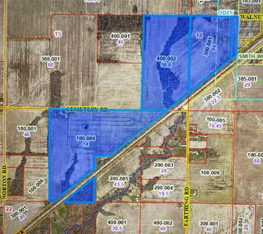 1322 Cemetery, ODIN, IL 62882 (#21073836) :: The Becky O'Neill Power Home Selling Team