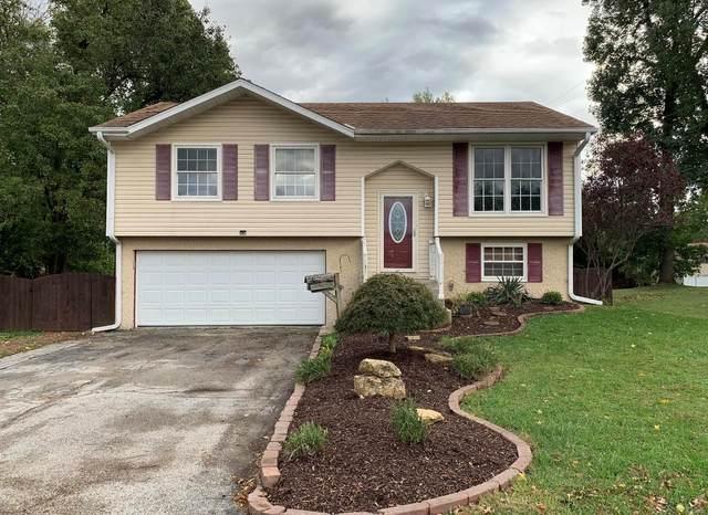 10 Blackburn Drive, Belleville, IL 62226 (#21074063) :: Fusion Realty, LLC