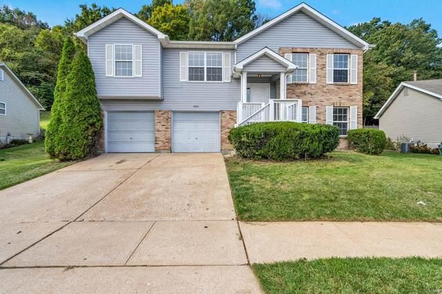 982 Winter Park, Fenton, MO 63026 (#21074624) :: The Becky O'Neill Power Home Selling Team