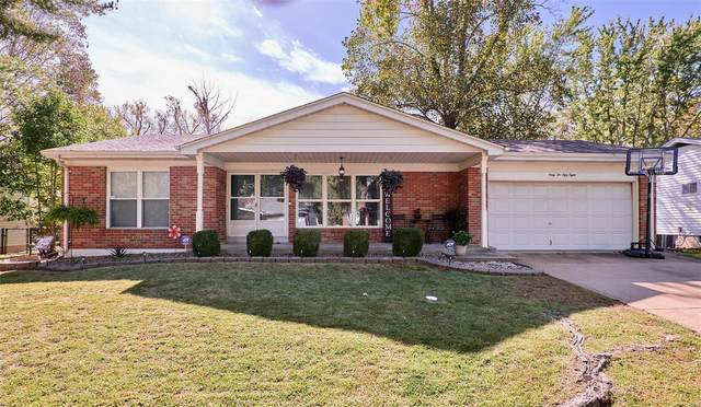 6258 Silver Fox Drive, Florissant, MO 63034 (#21074807) :: Matt Smith Real Estate Group