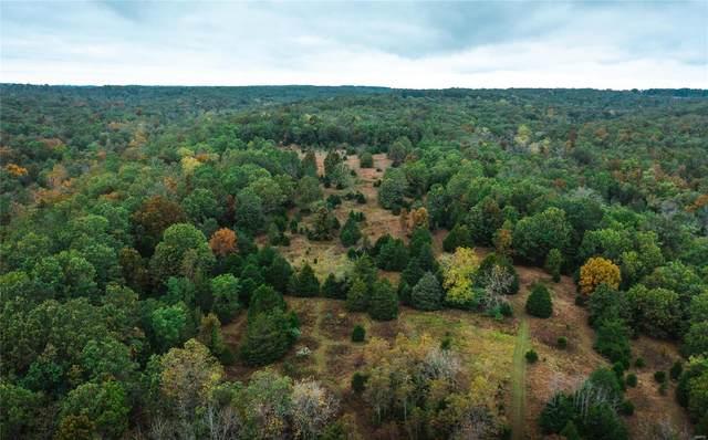 3941 Highway 137, Elk Creek, MO 65464 (#21075025) :: Matt Smith Real Estate Group