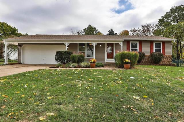 1317 Twin Trails Court, Fenton, MO 63026 (#21075163) :: The Becky O'Neill Power Home Selling Team