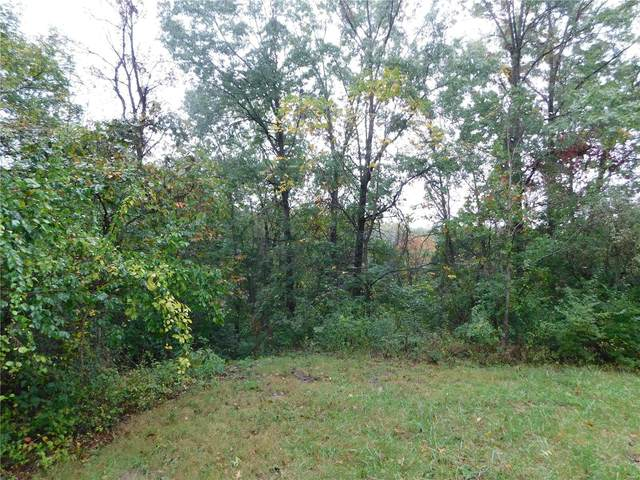 199 Bluffview Est., Foley, MO 63347 (#21075237) :: Mid Rivers Homes