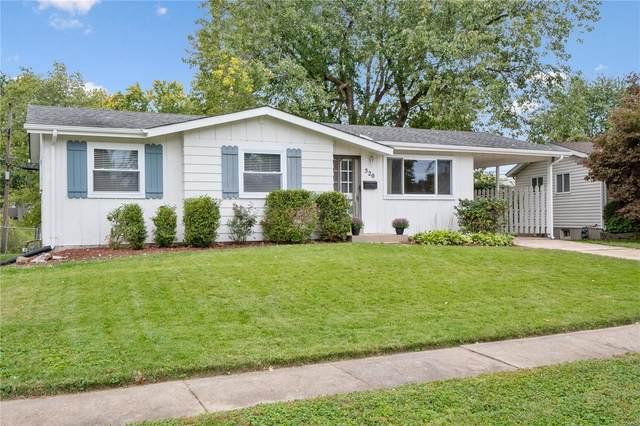 520 Lula Drive, Florissant, MO 63031 (#21075405) :: Kelly Hager Group | TdD Premier Real Estate