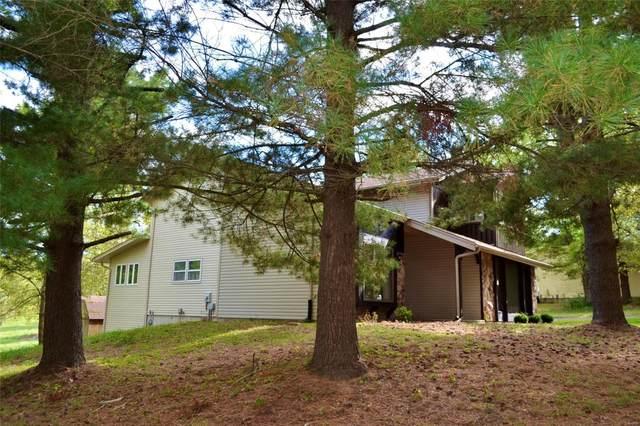 12 Deer Creek Drive, O'Fallon, MO 63366 (#21075561) :: Delhougne Realty Group