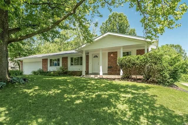 11721 Craig View Drive, St Louis, MO 63146 (#21075703) :: Mid Rivers Homes