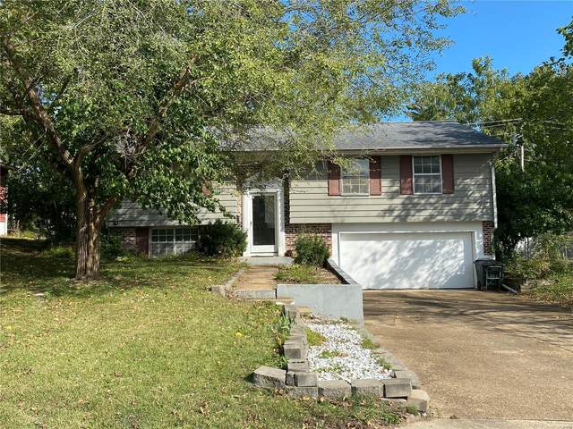 413 Bill Avenue, Rolla, MO 65401 (#21075735) :: Friend Real Estate