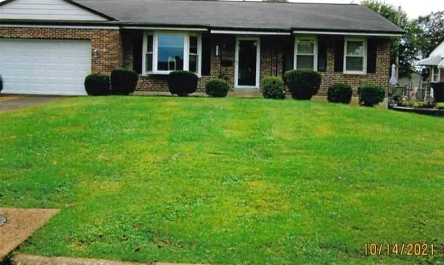 3832 Louis Street, St Louis, MO 63116 (#21075758) :: Jeremy Schneider Real Estate