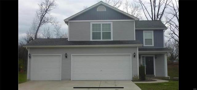340 Cuivre Valley, Troy, MO 63379 (#21076176) :: Mid Rivers Homes