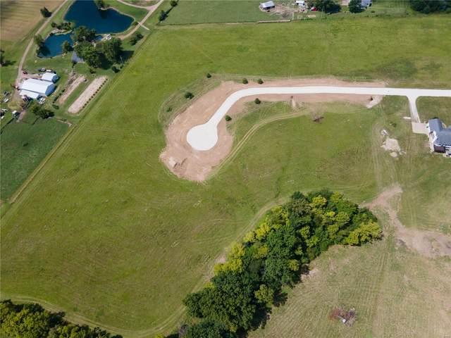16 Stonebriar Estates Court, Wentzville, MO 63385 (#21076365) :: Delhougne Realty Group