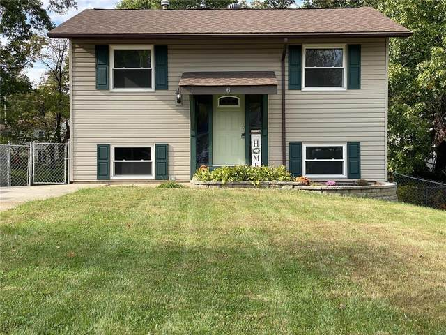 6 Spring Fawn Lane, Saint Peters, MO 63376 (#21076474) :: Delhougne Realty Group