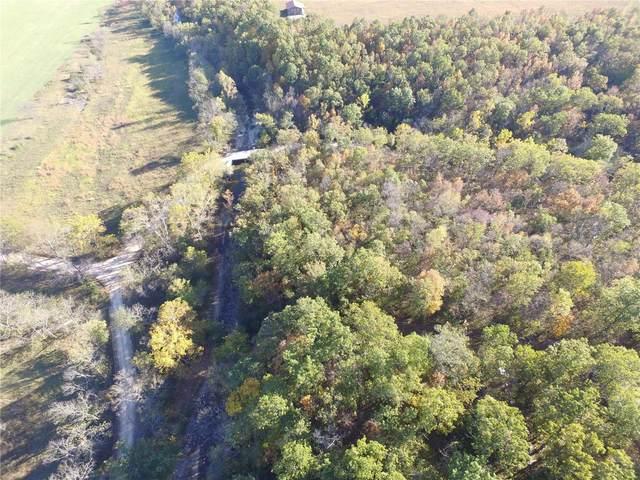 11201 Dogwood Road, Mountain Grove, MO 65711 (#21076927) :: Friend Real Estate