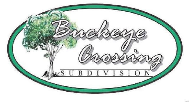 1039 Buckeye, Highland, IL 62249 (#4001677) :: Realty Executives, Fort Leonard Wood LLC