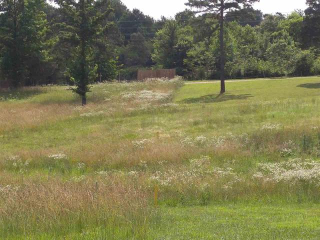 0 Lot 2 Shadow Rock Lake Estates, Poplar Bluff, MO 63901 (#9938825) :: Hartmann Realtors Inc.