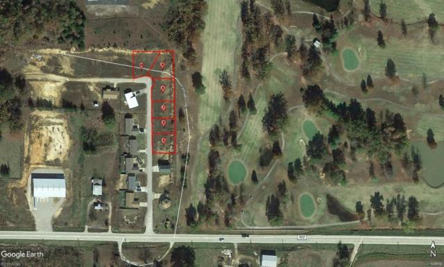 0 Lot 6 Palm Tree Drive, Poplar Bluff, MO 63901 (#9940888) :: Matt Smith Real Estate Group