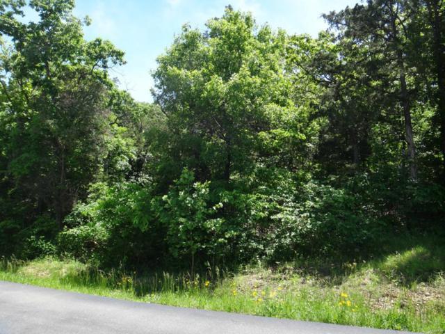 105 Lakeshore Drive, De Soto, MO 63020 (#16084040) :: Holden Realty Group - RE/MAX Preferred
