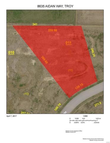 8635 Aidan Way, Troy, IL 62294 (#17029725) :: Kelly Hager Group | TdD Premier Real Estate