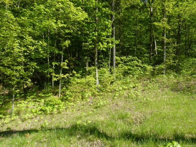 14 Old Logging Road #14 Lot, Eureka, MO 63025 (#17037666) :: Holden Realty Group - RE/MAX Preferred