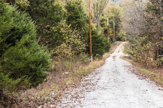 0 Holtwick Trail, Robertsville, MO 63072 (#17086076) :: Peter Lu Team