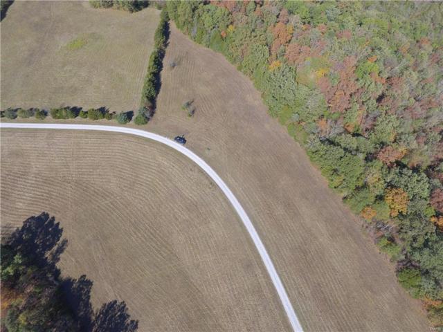 21 Lot Willow Wind Drive, De Soto, MO 63020 (#17094152) :: Peter Lu Team