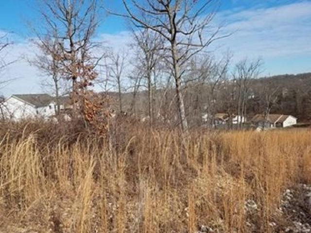0 Talladega, Saint Robert, MO 65584 (#17097120) :: Walker Real Estate Team