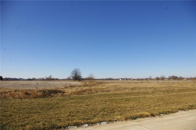 490 N Page, AVISTON, IL 62226 (#18002395) :: Fusion Realty, LLC